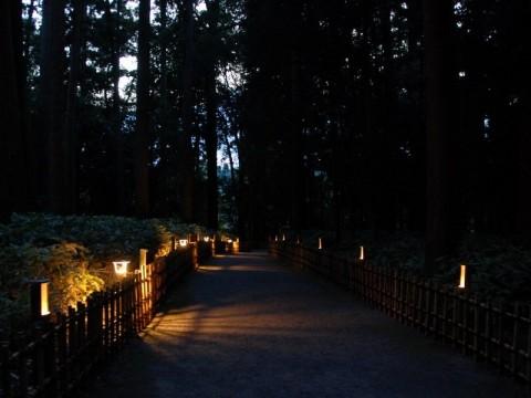偕楽園萩祭り02